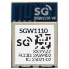 SG Wireless SGW1110 Bluetooth 5 module, built-in antenna